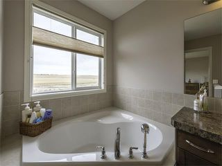 Photo 26: 240 HAWKMERE Way: Chestermere House for sale : MLS®# C4069766