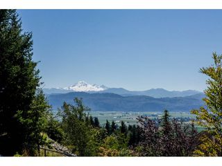 """Photo 20: 2445 EAGLE MOUNTAIN Drive in Abbotsford: Abbotsford East House for sale in """"Eagle Mountin"""" : MLS®# R2091872"""