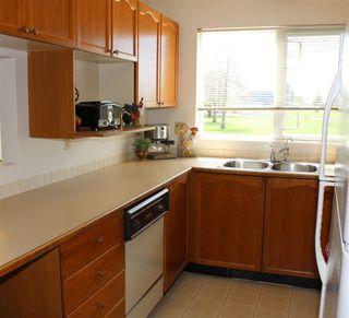 "Photo 13: 207 4989 47 Avenue in Delta: Ladner Elementary Condo for sale in ""Park Regent"" (Ladner)  : MLS®# R2158550"
