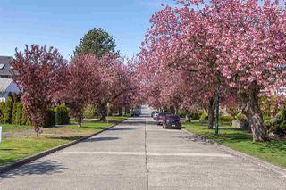 Photo 16: 1926 W 42ND Avenue in Vancouver: Kerrisdale House for sale (Vancouver West)  : MLS®# R2161088