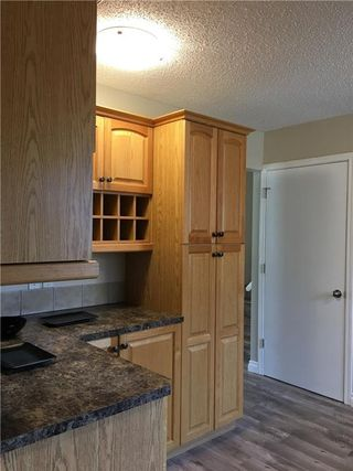 Photo 9: 124 DOVERTHORN Bay SE in Calgary: Dover House for sale : MLS®# C4120719