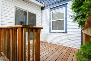 Photo 10: 124 Arlington Street in Winnipeg: Wolseley Residential for sale (5B)  : MLS®# 1715891