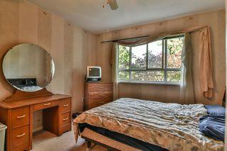 Photo 9: 205 15885 84 Avenue in Surrey: Fleetwood Tynehead Condo for sale : MLS®# R2183904
