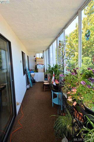 Photo 9: 303 1050 Park Blvd in VICTORIA: Vi Fairfield West Condo for sale (Victoria)  : MLS®# 770112