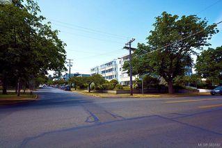 Photo 16: 303 1050 Park Blvd in VICTORIA: Vi Fairfield West Condo for sale (Victoria)  : MLS®# 770112