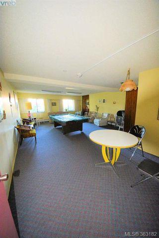 Photo 15: 303 1050 Park Blvd in VICTORIA: Vi Fairfield West Condo for sale (Victoria)  : MLS®# 770112