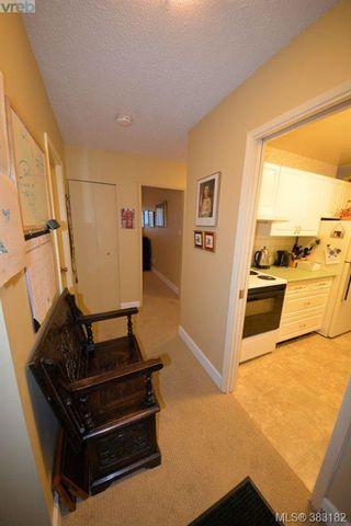 Photo 19: 303 1050 Park Blvd in VICTORIA: Vi Fairfield West Condo for sale (Victoria)  : MLS®# 770112