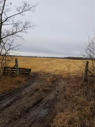 Main Photo: Twp 604060 RR195: Rural Thorhild County Rural Land/Vacant Lot for sale : MLS®# E4135027