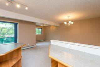 Main Photo: 211 11033 127 Street in Edmonton: Zone 07 Condo for sale : MLS®# E4139584