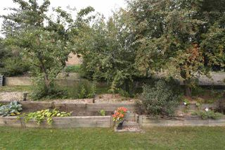 Photo 30: 14 EMERALD Terrace: St. Albert House for sale : MLS®# E4144713