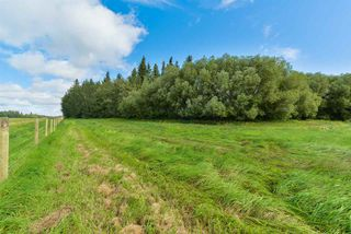 Photo 26: 51430 RGE RD 272: Rural Parkland County House for sale : MLS®# E4147452