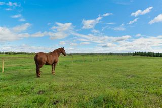 Photo 29: 51430 RGE RD 272: Rural Parkland County House for sale : MLS®# E4147452