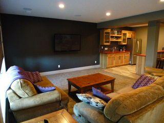 Photo 22: 1071 Summerwood Estates Road: Sherwood Park House for sale : MLS®# E4149743