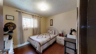 Photo 20: 13316 66 Street NW in Edmonton: Zone 02 House for sale : MLS®# E4158748