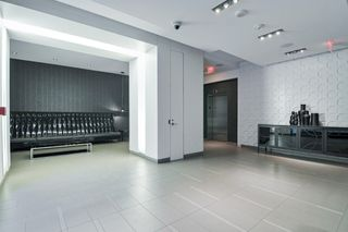 Photo 21: 313 560 W Front Street in Toronto: Waterfront Communities C1 Condo for sale (Toronto C01)  : MLS®# C4482108