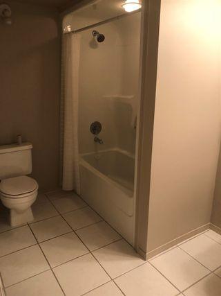 Photo 21:  in Edmonton: Zone 14 House for sale : MLS®# E4174532