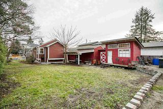 Photo 53: 20541 114 Avenue in Maple Ridge: Southwest Maple Ridge House for sale : MLS®# R2435471