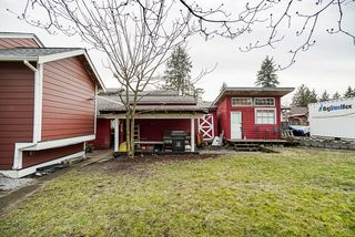 Photo 29: 20541 114 Avenue in Maple Ridge: Southwest Maple Ridge House for sale : MLS®# R2435471