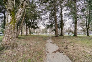 Photo 33: 20541 114 Avenue in Maple Ridge: Southwest Maple Ridge House for sale : MLS®# R2435471