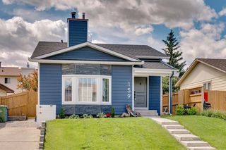 Photo 27: 159 BERNARD Way NW in Calgary: Beddington Heights Detached for sale : MLS®# A1016964