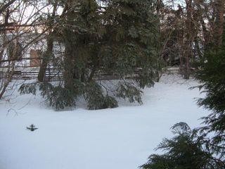 Photo 10: 10 TAMWORTH Bay in WINNIPEG: Fort Garry / Whyte Ridge / St Norbert Residential for sale (South Winnipeg)  : MLS®# 1104502