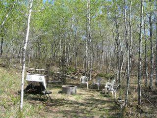 Photo 4: Wiebe Acreage in Corman Park NW: Corman Park Acreage for sale (Saskatoon NW)  : MLS®# 415898