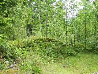 Photo 4: LOT 40 Mountainview Road in Pender Harbour: Pender Harbour Egmont Home for sale (Sunshine Coast)  : MLS®# V1012841