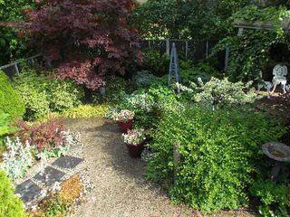 Photo 3: 193 Carmichael Avenue in Toronto: Bedford Park-Nortown House (Bungalow) for sale (Toronto C04)  : MLS®# C2951358