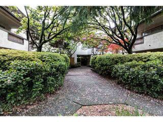 "Photo 11: 301 809 W 16TH Street in North Vancouver: Hamilton Condo for sale in ""PANORAMA COURT"" : MLS®# V1120495"