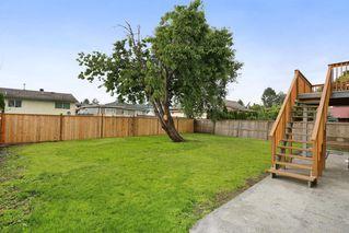 Photo 19: 12765 113B Avenue in Surrey: Bridgeview House for sale (North Surrey)  : MLS®# R2083607