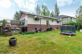 Photo 14: 4563 208 Street in Langley: Langley City House for sale : MLS®# R2176468
