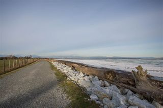 Photo 17: 1671 BRAID Road in Delta: Beach Grove House for sale (Tsawwassen)  : MLS®# R2240957