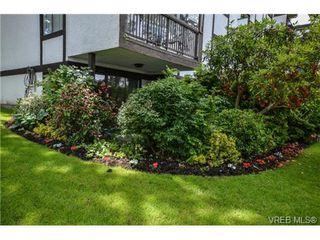 Photo 4: 101 1792 Rockland Avenue in VICTORIA: Vi Rockland Residential for sale (Victoria)  : MLS®# 324663