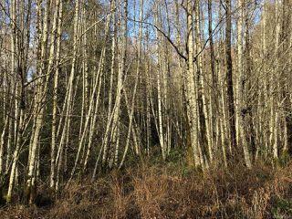 Photo 4: LT 13 PRENDERGAST ROAD in COURTENAY: CV Courtenay West Land for sale (Comox Valley)  : MLS®# 779740