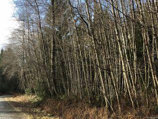 Photo 2: LT 13 PRENDERGAST ROAD in COURTENAY: CV Courtenay West Land for sale (Comox Valley)  : MLS®# 779740