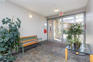 Photo 4: 207 1959 Polo Park Court in SAANICHTON: CS Saanichton Condo Apartment for sale (Central Saanich)  : MLS®# 388283