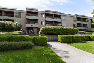 "Main Photo: 310 10221 133A Street in Surrey: Whalley Condo for sale in ""The Village at Surrey Place"" (North Surrey)  : MLS®# R2273405"