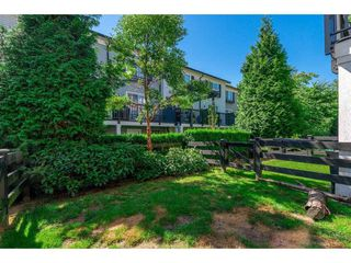Photo 18: 28 18983 72A Avenue in Surrey: Clayton Townhouse for sale (Cloverdale)  : MLS®# R2286875