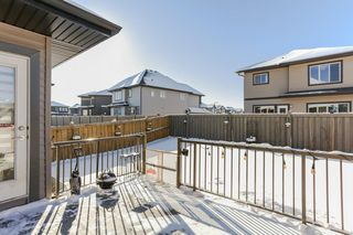 Photo 27: 1325 AINSLIE Wynd in Edmonton: Zone 56 House for sale : MLS®# E4145010