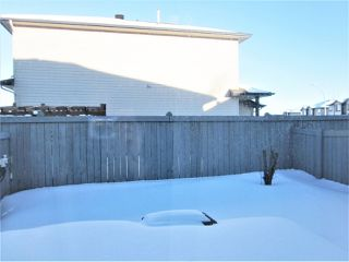 Photo 21: 3 13403 CUMBERLAND Road in Edmonton: Zone 27 House Half Duplex for sale : MLS®# E4147310