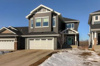 Main Photo: 2138 BLUE JAY Point in Edmonton: Zone 59 House for sale : MLS®# E4148364