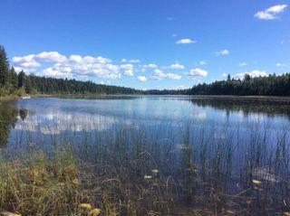 "Photo 19: 3399 SPOKIN LAKE Road: 150 Mile House House for sale in ""MIOCENE"" (Williams Lake (Zone 27))  : MLS®# R2351166"