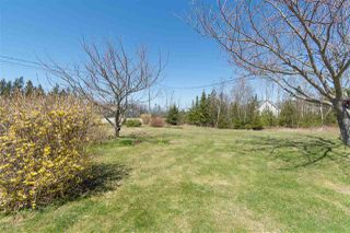 Photo 29: 42 DIMOCK Road in Margaretsville: 400-Annapolis County Residential for sale (Annapolis Valley)  : MLS®# 202007711