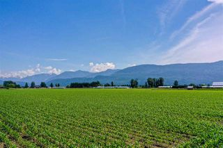 Photo 3: 6250 CHADSEY Road in Sardis - Greendale: Greendale Chilliwack Land for sale (Sardis)  : MLS®# R2467293