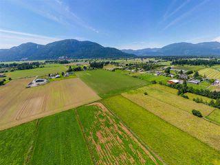Photo 8: 6250 CHADSEY Road in Sardis - Greendale: Greendale Chilliwack Land for sale (Sardis)  : MLS®# R2467293