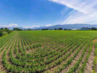 Photo 4: 6250 CHADSEY Road in Sardis - Greendale: Greendale Chilliwack Land for sale (Sardis)  : MLS®# R2467293