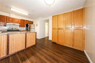 Photo 10: 1003 Chancellor Drive in Winnipeg: Waverley Heights Residential for sale (1L)  : MLS®# 202014340