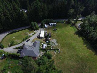Photo 12: 12771 MCNUTT Road in Maple Ridge: Northeast House for sale : MLS®# R2490335