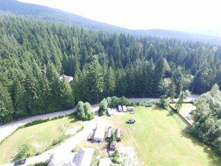 Photo 13: 12771 MCNUTT Road in Maple Ridge: Northeast House for sale : MLS®# R2490335