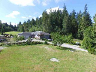 Photo 5: 12771 MCNUTT Road in Maple Ridge: Northeast House for sale : MLS®# R2490335